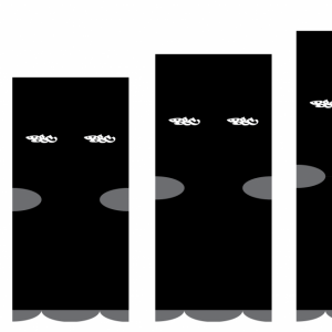 Wildcard Crew Socks 2 Pk – Black (PRE-ORDER)