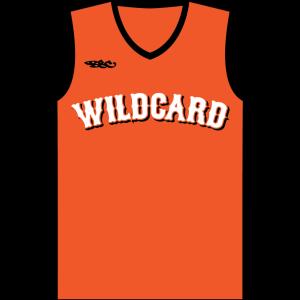 Custom V-Neck Baseball or Softball Jersey